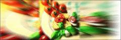 Alimentación Vegetariana: Todas las Opciones