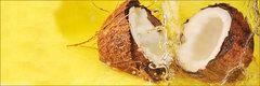 Leche de coco: 5 sorprendentes beneficios para tu salud