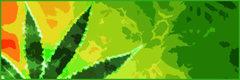 Marihuana para el dolor -