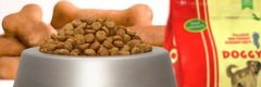 Comida para perros: Nutrientes esenciales para tu mascota