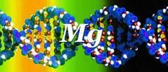 ¿Para qué sirve el magnesio? Conoce sus increíbles beneficios