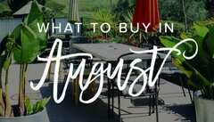 August Shopping   The Best Things to Buy in August 2021