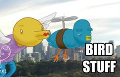 Bird Stuff