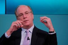 BlackRock's Fink says he is committed to gender diversity