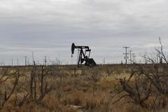 Oil up 1% after attack on Saudi field, but OPEC report caps gains