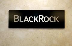 BlackRock's largest mutual fund boosts energy holdings: manager