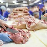 Meatpacking Plants Accounted for 334,000 U.S. COVID Cases: Study