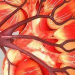 Is Zinc a Friend or Foe to Kidney Stones?