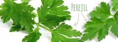 Perejil para adelgazar: perder peso con la verdura más común de casa