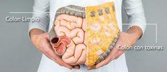 Limpieza del Colon: alimentos y Remedios que te ayudan
